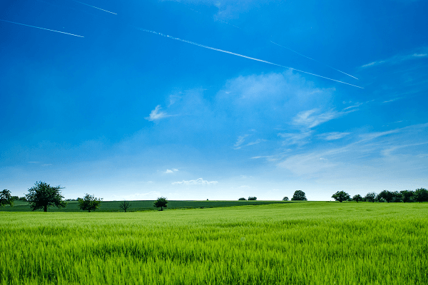 How to choose the right vacant land for your property development
