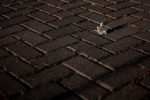 Clean up after paving project | GotProperty