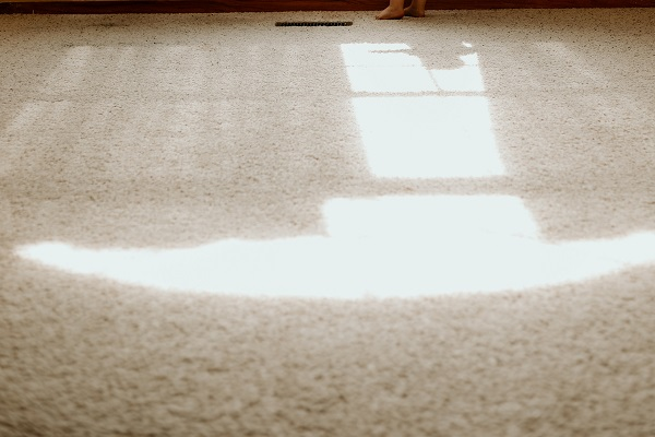 Types of carpets to get for your home   GotProperty